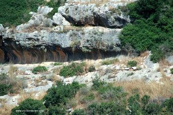 צנירים בנחל חרובים