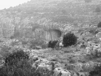 מערת הדרקון שמעון כהן 12