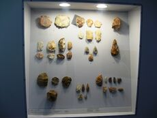 Perugia Prehistory 1