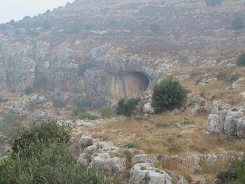 מערת הדרקון שמעון כהן 1