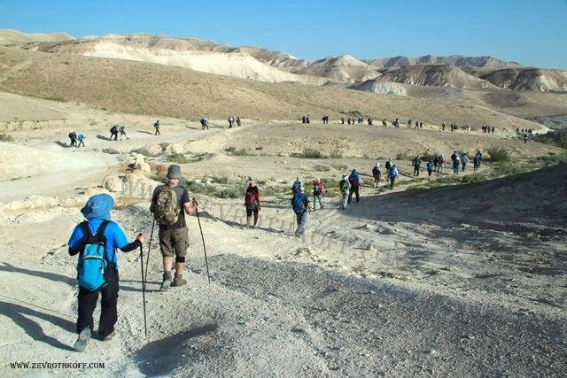 רמת המדבר באזור נחל תור
