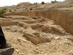 Remains of Hasmonean palaces