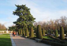 El Parterre Parque del Buen Retiro Madrid view 2