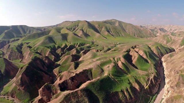 The_green_desert_by_Amir_Aloni