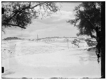 Snow 1921