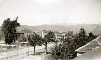 Metula1928