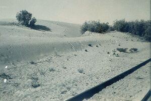 Sand a Sinai 3
