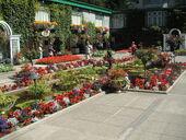Butchart-gardens-007