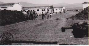 Nechalin 1948