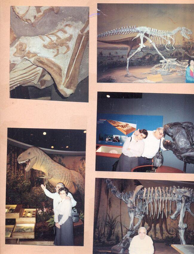 Royal Tyrrell Museum of Palaeontology.jpg