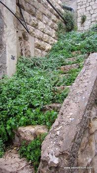 מדרגות הנביאים 2