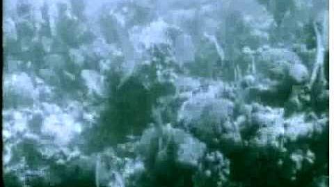 20,000_Leagues_Under_the_Sea_(1916)