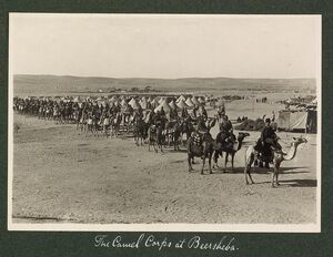 The Camel Corps at Beersheba, 1915