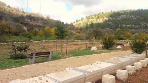 גן שדה תלם בעמק הארזים - ירושלים