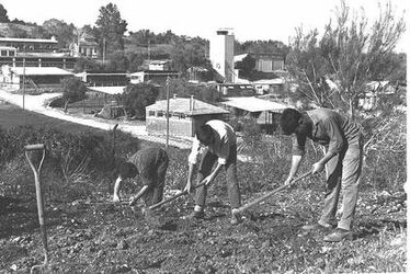 STUDENTS WORKING IN THE GARDEN OF THE MEIR