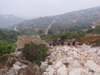 שומרה שמעון כהן 2