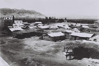 GENERAL VIEW OF JERICHO. (COURTESY OF AMERICAN COLONY) מבט כללי על העיר יריחו.D839-035