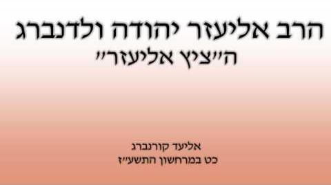 הרב אליעזר יהודה ולדנברג