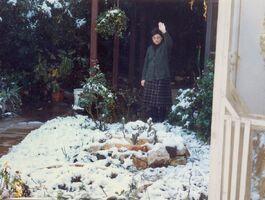 Snow a kdumim 10