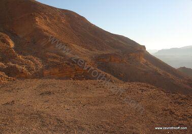 דרגש פרומן בהר מרפק