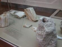 Museo Archeologico Nazionale G A Sanna 01