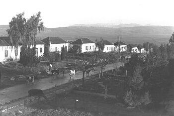 METULA. מראה כללי של היישוב מטולה בגליל.D29-038