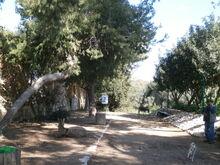 הדרך העותמאנית