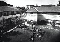 מקוה ישראל - בית ספר חקלאי-JNF026206