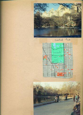 Central park 444.jpeg