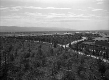נהרים - מפעל רוטנברג, תל אור מעונות עובדים.-JNF044522