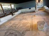 בית הכנסת העתיק בציפורי