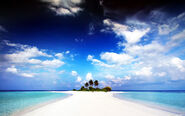 Paradise4