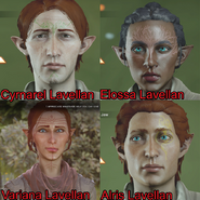 LavellanFamily