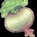 174-plump-turnip.png