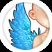 901-comprehensive-wings.png