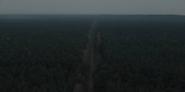 DARK 1x05 0006–Trees overlook