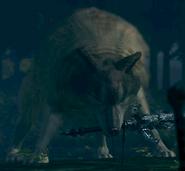 Sif el Gran lobo gris