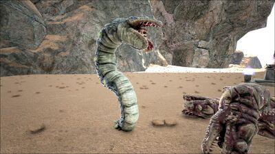 Altar Elite Dune Thrasher 3.jpg