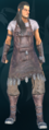 Iron armor.png