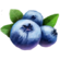 Icon berries.png