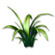 Icon thundergrass.png