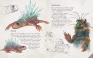 The Dark Crystal Bestiary - Solobes and Howefrogs