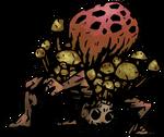 Fungal Artillery.png