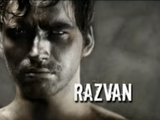 Razvan Shonski