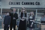 Collins Canning Co.jpg