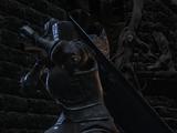 Убийца рыцарей Цориг