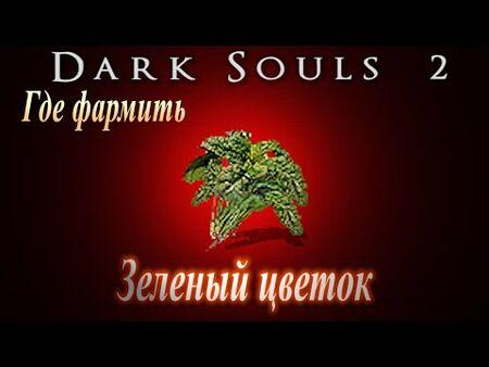 ГАЙД_Где_фармить_Зеленый_цветок_и_Самоцвет_жизни_в_Dark_Souls_2