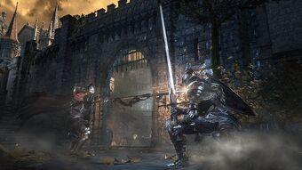 Hyper Armor Dark Souls Wiki Fandom
