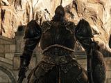 Драконий страж