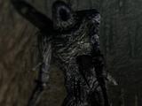 Боссы (Dark Souls II)